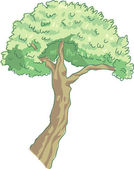 The view of one tree — Stock Vector