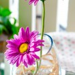 Decorative flower — Stock Photo