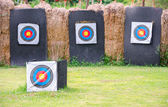 Outdoor archery shooting target in a field — Stockfoto