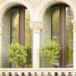 Stock Photo: Two Imposing Windows