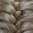 Foto Stock: Braided Hair