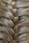 Braided Hair — Stock Photo