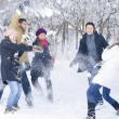 Stock Photo: Playing in Snow