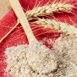 Wheat Bran — Stock Photo