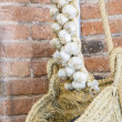 Braided Garlic — Stockfoto