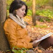 Stock Photo: Time for books in the autumn forest