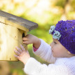 Child Looking Curious at one Birds House — Stock Photo