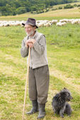 Old Sheperd near his flock — Stock Photo
