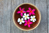 Frangipani flower floating in the ancient bowl — Stock Photo