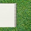 Stock Photo: Notebook on grass background