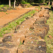 Laterite are excavated prepare for restoration of ruins sanctuary — Stock Photo #14122961