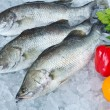Stock Photo: Fresh Seabass and vegetable chilled on ice