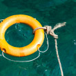 Stock Photo: Rescue tube
