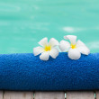 Stock Photo: Blue Towel and Flower at Poolside
