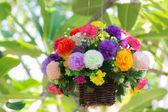 Kolorowe kwiaty — Zdjęcie stockowe
