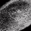 Stock Photo: Black and white fingerprint