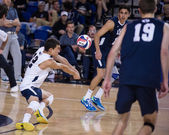 NCAA Volleyball: BYU vs. UCI — Stock Photo