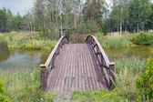 Wooden bridge 2 — Stock Photo