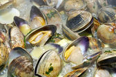 Clams cooking — Stock Photo