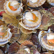 Stockfoto: Seafood: Scallop