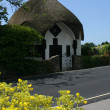 Thatched cottage in Lyme Regis — Stock Photo