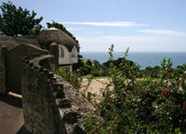 Thatched cottage in Lyme Regis — Foto Stock