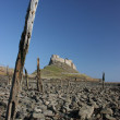 Stock Photo: Holy sland, castle on hill