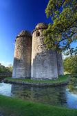 Nunney Castle Somerset — Stock Photo