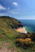 The South West Coast Path South Devon Coastline England — Stock Photo