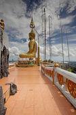 Tiger Temple Thailand — Stock Photo