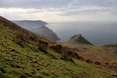 The cliffs of Exmoor — Stock Photo