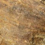 Granite texture close-up. — Stock Photo #30524647