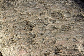 Granite texture close-up. — Stock Photo
