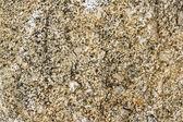 Granite texture close-up. — Stock Photo
