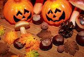 Autumn still life with halloween pumpkin, mushrooms and chestnuts — Stock Photo