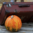 Royalty-Free Stock Photo: Halloween pumpkin and suitcase