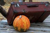 Halloween pumpkin and suitcase — Stock Photo