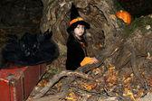 Halloween tric nebo treater v její kostým čarodějnice — Stock fotografie