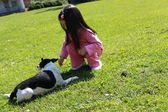 Little girl playing with dog — Stock Photo