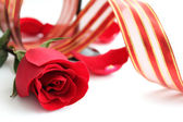 Red rose and red ribbon — Stock Photo