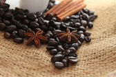 Coffee beans, cinnamon sticks and star anise — Stock Photo