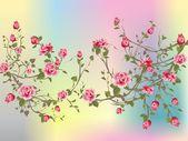 Keř růže — Stock vektor