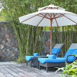 Stock Photo: Parasol in front yard