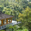 Resort in rainforest — Stock Photo