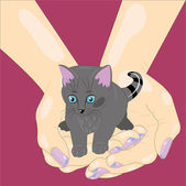 Kitten in palms. — Stock Vector
