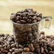 Coffee beans — Stock Photo #12781678