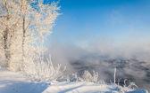 River winter — Stock Photo