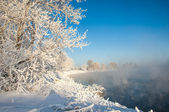 River winter — Stock Photo