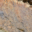 Stock Photo: Petroglyphs Tamgaly Tas