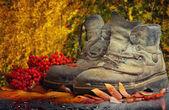 старая обувь — Стоковое фото